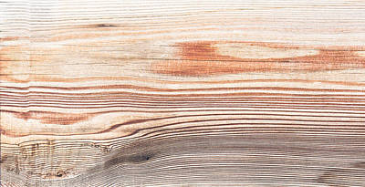 Wood Texture Print by Tom Gowanlock