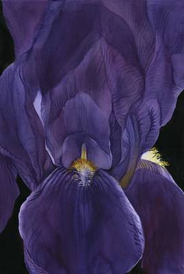 Painting - 50 Shades Of Purple by Alfred Ng