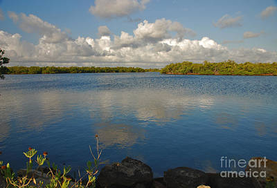 Photograph - 50- Singer Island by Joseph Keane