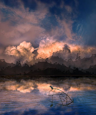 Photograph - 4111 by Peter Holme III
