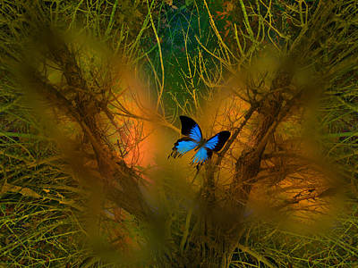 Photograph - 4114 by Peter Holme III