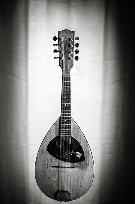 Photograph - 50.1845 Framus Mandolin by M K  Miller