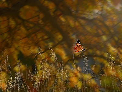 Photograph - 4139 by Peter Holme III