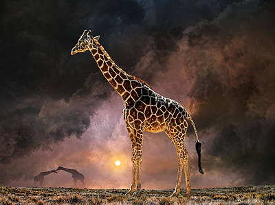 Photograph - 4144 by Peter Holme III