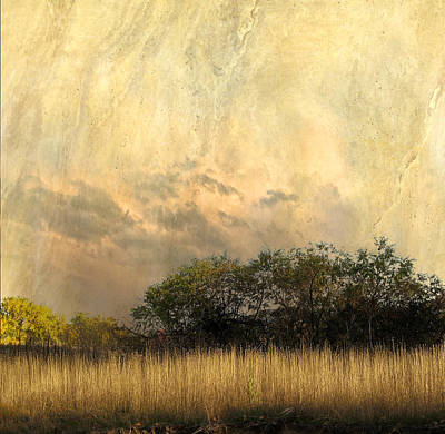 Photograph - 4145 by Peter Holme III