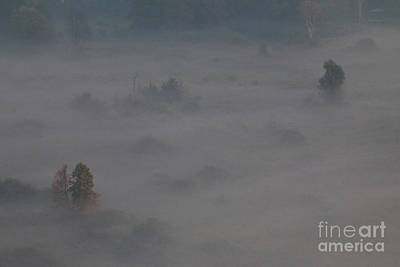 Photograph - Morning Mist by Pietro Ebner