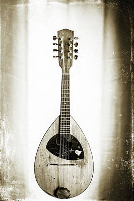 Photograph - 51.1845 Framus Mandolin by M K  Miller