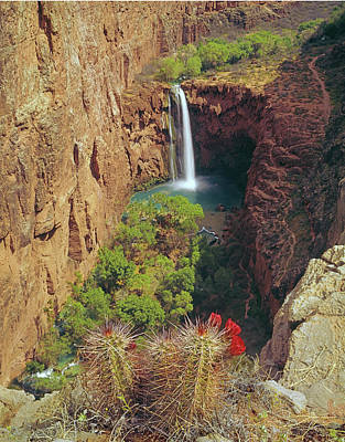 Photograph - 513216 Mooney Falls Az by Ed Cooper Photography