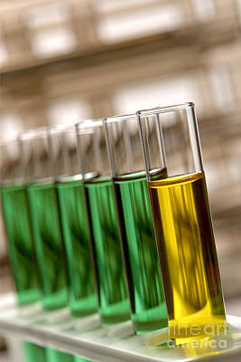 Fluid Photograph - Laboratory Test Tubes In Science Research Lab by Olivier Le Queinec