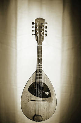 Photograph - 53.1845 Framus Mandolin by M K  Miller