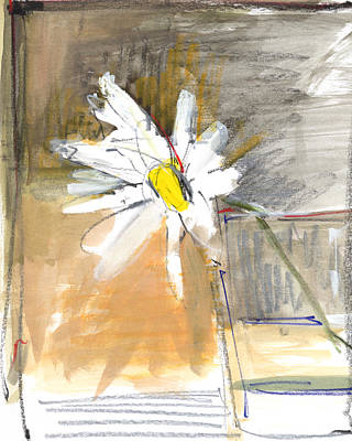 Daisies Drawing - Rcnpaintings.com by Chris N Rohrbach