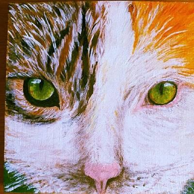 Cat Face Original