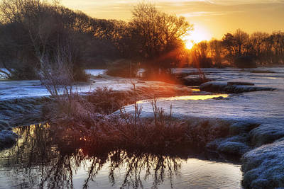 Winter Morning Photograph - New Forest - England by Joana Kruse