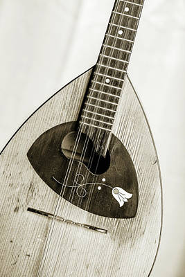 Photograph - 57.1845 Framus Mandolin by M K  Miller