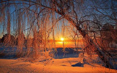 Landscape Digital Art - Winter by Super Lovely
