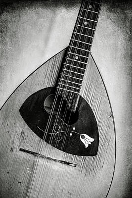Photograph - 58.1845 Framus Mandolin by M K  Miller
