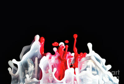 Photograph - Paint Explosion by Gualtiero Boffi