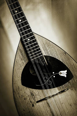Photograph - 59.1845 Framus Mandolin by M K  Miller