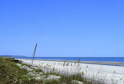 Photograph - Resting On Sapelo Island by Laurie Perry