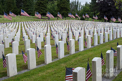 Photograph - American Flags At Cemetery by Jim Corwin
