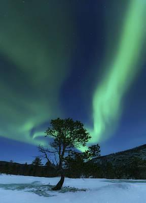 Landscape In Norway Photograph - Aurora Borealis, Forramarka, Troms by Arild Heitmann