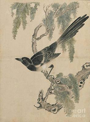American Eagle Painting - Birds Of Japan In The 19th Century by Celestial Images