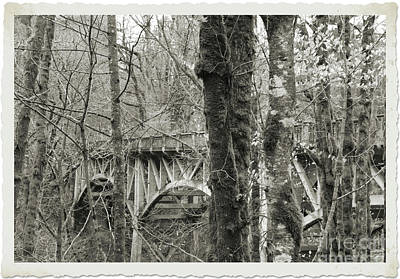 Photograph - Bridge by Serena Ballard
