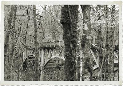 Photograph - Bridge by Serena Ballard