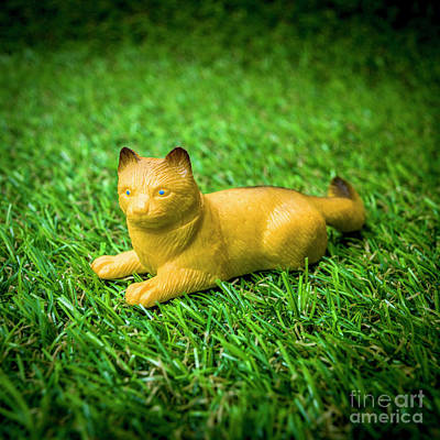 Cat Figurine Art Print by Bernard Jaubert