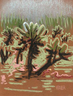 Arizona Drawing - Cholla by Donald Maier