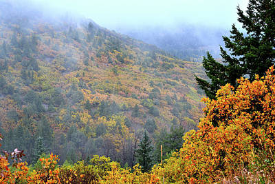 Photograph - Dallas Creek Road Fall Colors by Ray Mathis