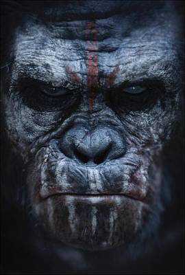 Mystery Digital Art - Dawn Of The Planet Of The Apes 2014 by Fine Artist
