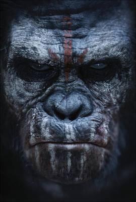 Ape Digital Art - Dawn Of The Planet Of The Apes 2014 by Geek N Rock
