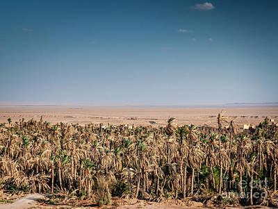 Michael Jackson - Desert Landscape View In Garmeh Oasis Southern Iran by JM Travel Photography