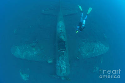 New Britain Photograph - Diver Explores The Wreck by Steve Jones