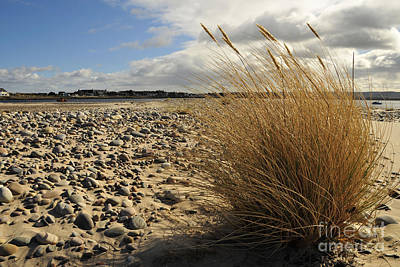 Scottish Photograph - Findhorn by Nichola Denny