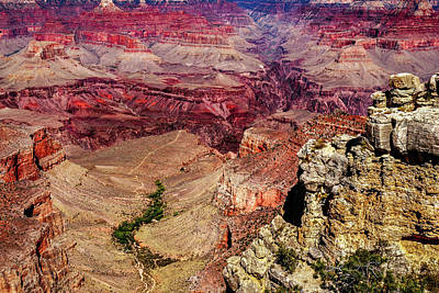 Photograph - Grand Canyon by Doug Long