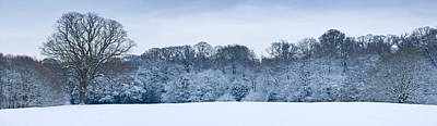 Cold Temperature Photograph - Hampstead Heath In Winter, North by Panoramic Images