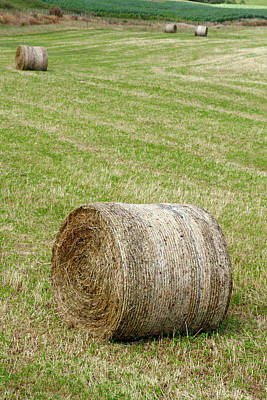 Bale Photograph - Hay Bales by Les Cunliffe