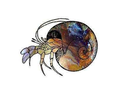 Water Themed Painting - Hermit Crab by Mordax Furittus