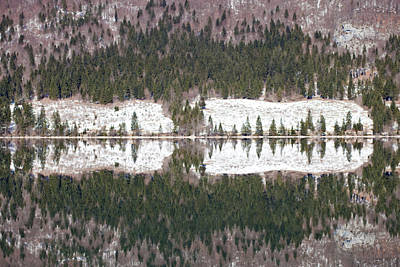 Lake Bohinj Art Print by Andre Goncalves