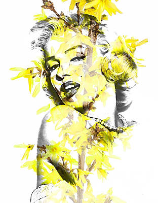 Celebrities Mixed Media - Marilyn Monroe Collection by Marvin Blaine