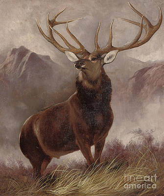 Stag Painting - Monarch Of The Glen by Edwin Landseer