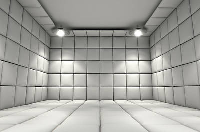 Mental Illness Digital Art - Padded Cell by Allan Swart