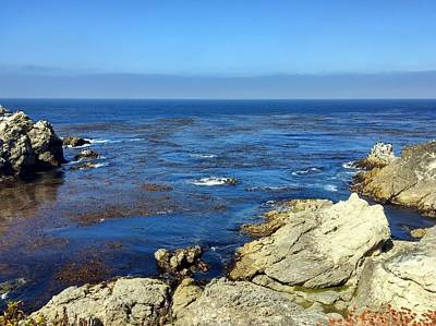 Photograph - Point Lobos Tidepool by Richard Yates