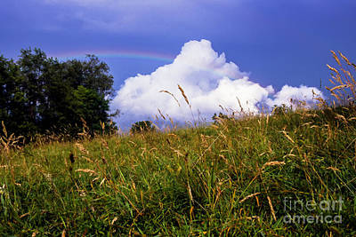 Rainbow Over Pasture Field Art Print by Thomas R Fletcher