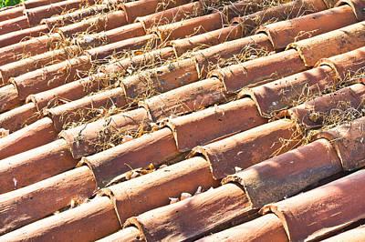 Roof Tiles Art Print by Tom Gowanlock