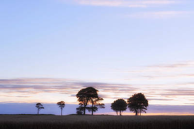 Baeume Photograph - Roundway Hill - England by Joana Kruse
