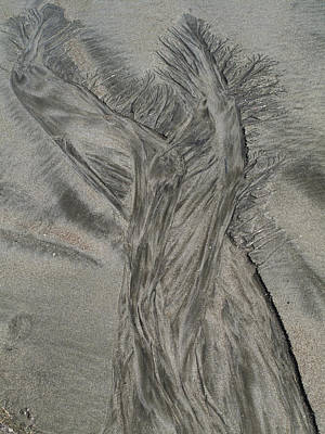 Sand Reels Art Print