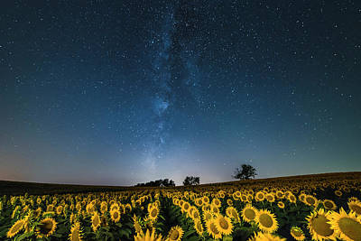 Photograph - Sunflower Galaxy by Ryan Heffron